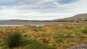 idyllischer Lago Argentino