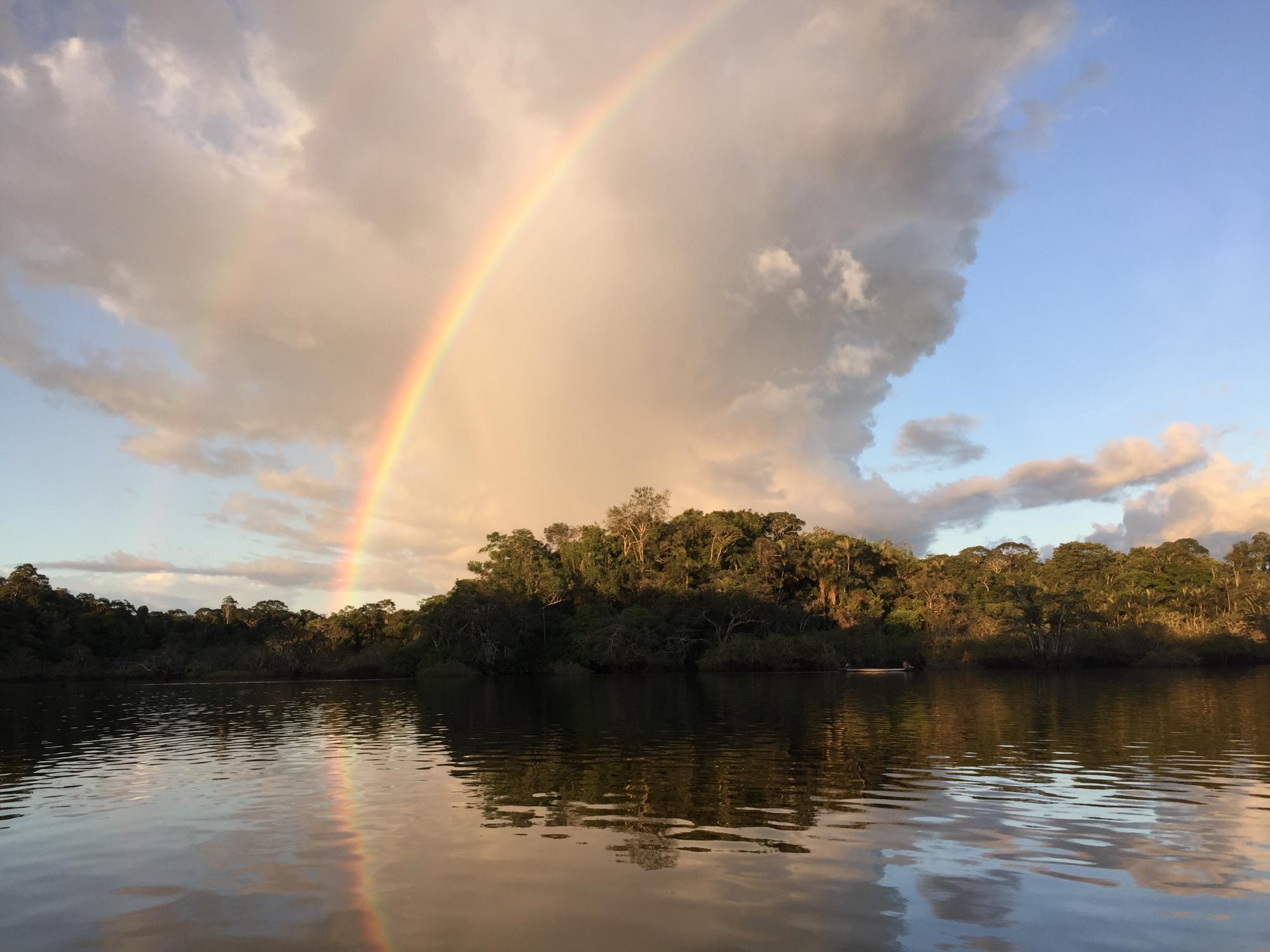 Doppelter Regenbogen über den Mangroven