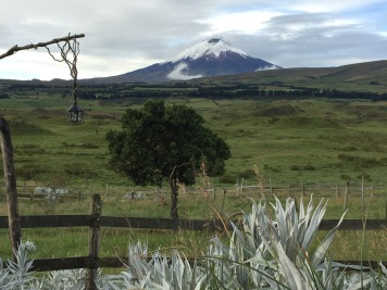 Cotopaxi mit Laterne