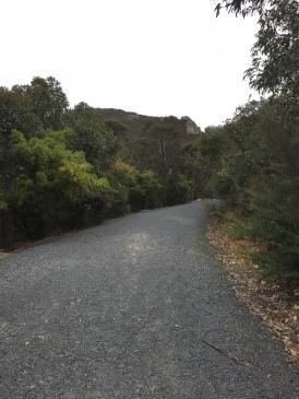 """""""Wanderweg"""" auf den Mt Oberon"""