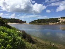Queenscliff Coastal Reserve