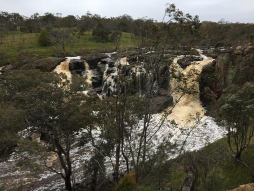 Die Wasserfälle in der Nähe von Hamilton