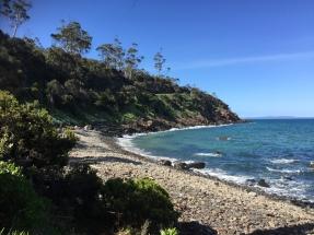 Irgendwo im Niergendwo - Ostküste Tasmaniens