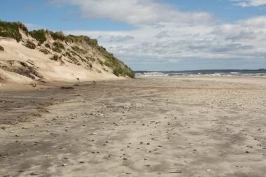 Sanddünen am Strand in der Nähe von Strahan
