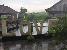 Ja, auch im Regen kann Bali entzückend sein